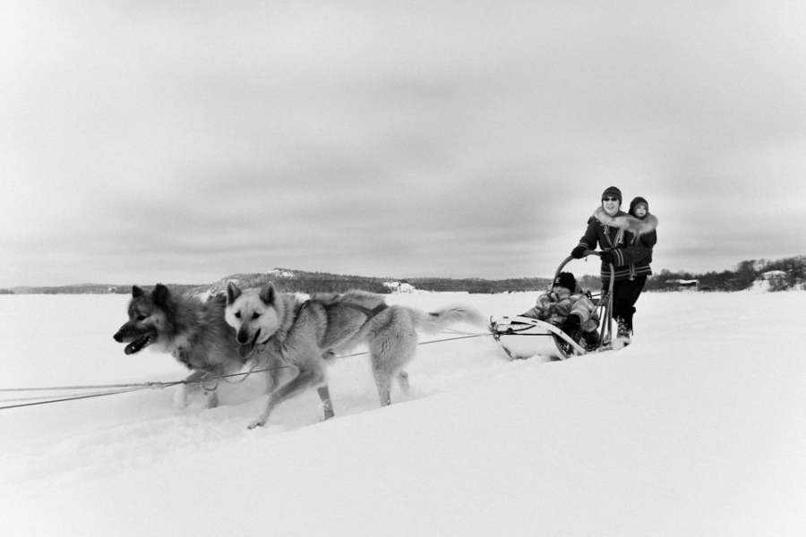 Dog_Sledding_Sioux_Lookout-8624